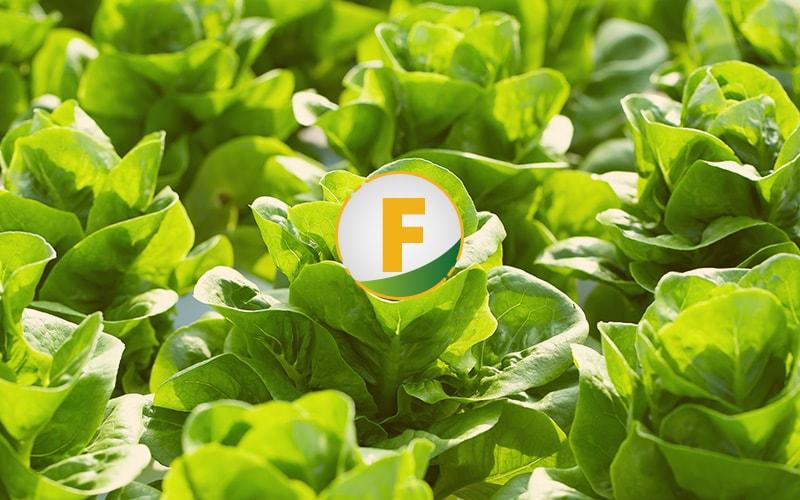 Fertilizantes complementarios